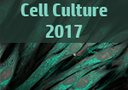 Three-dimensional cell culture: Innovations in tissue scaffolds and biomimetic systems logo