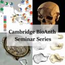 Biological Anthropology Seminar Series logo