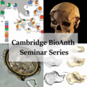Biological Anthropology Seminar Series logo