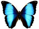 #<Talk:0x7fd9fbe705b8> logo