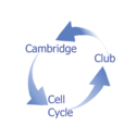 Cambridge Cell Cycle Club Talks logo