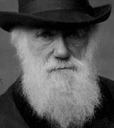 Darwin College Lecture Series logo