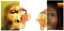 #<Talk:0x7f57d29b7fe0> logo
