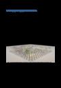 #<Talk:0x7f957a33eed0> logo