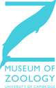 Discovery Talks at the Museum of Zoology logo