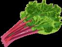 Rhubarb Hour logo