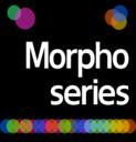 Morphogenesis Seminar Series logo
