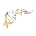 Cambridge Area Sequencing Informatics Meeting VI (2014) logo